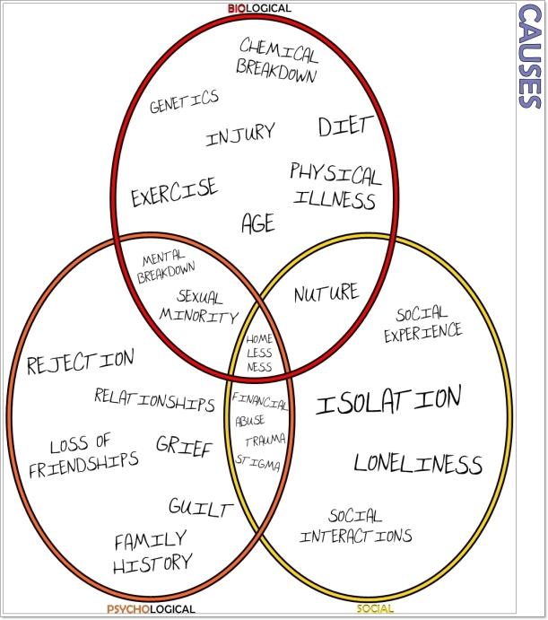 __Biopsychosocial Model (CAUSES)