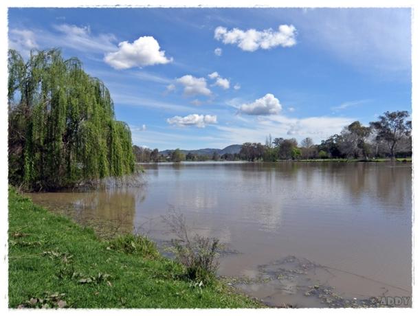 Belvoir Park, Wodonga