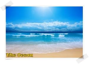The Ocean (any ocean)