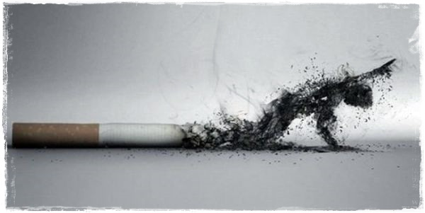 cigarette-ash-art_130434526842
