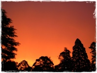 Sunset in Daylesford