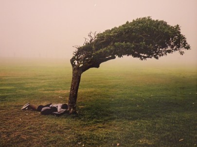 Green Point Common, Cape Town (Pieter Hugo)